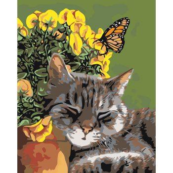 Piešimas pagal skaičius - Snaudžianti katė (40x50 cm)