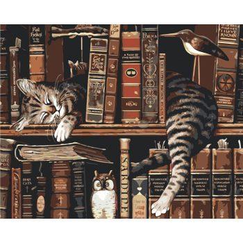 Piešimas pagal skaičius - Katinas tarp knygų (40x50 cm)