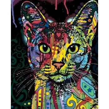 Tapyba pagal skaičius - Spalvotas katinas