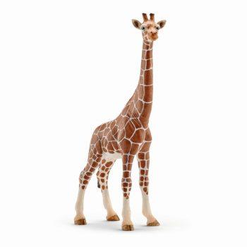 14750 SCHLEICH WILD LIFE Žirafos Patelė